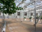 AL-54   - Our AL-54 fans in use at a large greenhouse laboratory. 